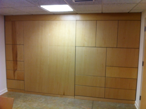 Birch Cabinet Wall with Murphy Bed